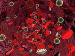 Причины понижения лейкоцитов в крови