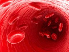 Понижены эритроциты в крови - причины